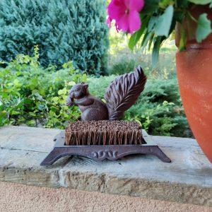 Czyścibut zabawna wiewiórka z orzechem do czyszczenia butów.