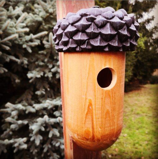 domek dla ptaków żołądź