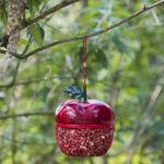 Karmnik dl apaków w kształcie czerwonego jabłka