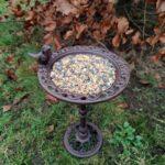 karmniki dla ptaków stojące na jesiennym tle