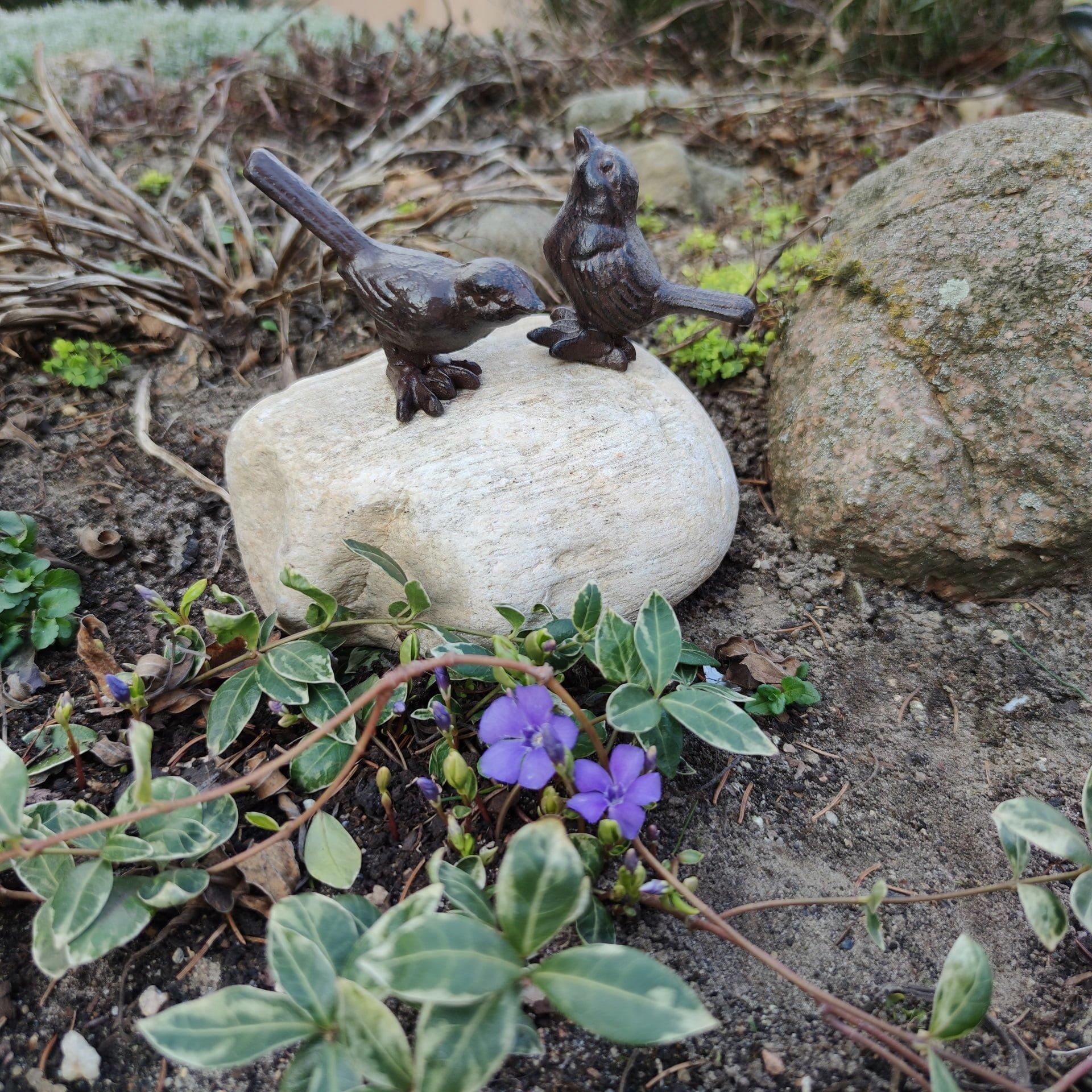 ptaszki w ogrodzie