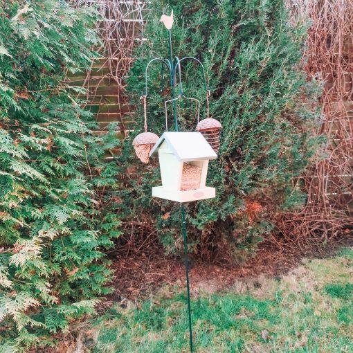 stacja dla ptaków z karmnikami