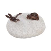 żaba i ważka na kamieniu