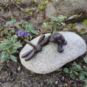 ważka i żaba na kamieniu